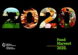 Submission to Food Harvest 2020 stakeholder consultation: Aquaculture plans need environmental assessment too