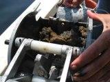 Dirty secrets down on the salmon farm &  Salmon farms turn sea bed intograveyard