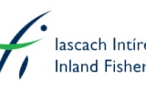 Inland Fisheries Ireland publish statement on BIMs Fishfarm Proposal in Galway Bay