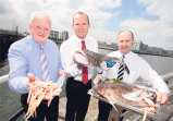 Southern Star, 27 July 2013: €1bn salmon farming plan condemned