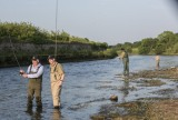 Inland Fisheries Ireland Press Release: New Study – Angling worth €0.75 billion to Irish Economy and supporting 10,000 jobs in rural Ireland