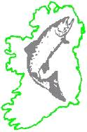Letter to the Editor, Irish Examiner, 23 Aug 2013: Coveney must protect wild salmon