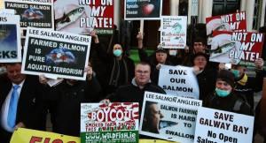 exam201113BoycottSalmonProtest_large