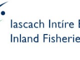 Inland Fisheries Ireland, 10 Sept 2015: Salmon farms can have a significant impact on wild salmon and sea trout stocks